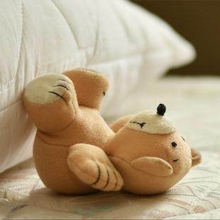 canti del cuscino