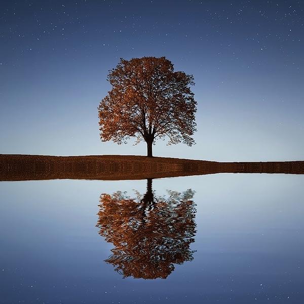 Essere Mindfulness